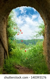 Tunnel corridor with arch opening with green grass and poppy flowers. New hope at the end of the tunnel, entrance to paradise.
