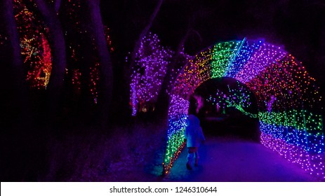 Tunnel decorated with Christmas lights in the garden.