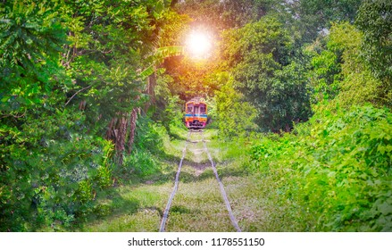 Tunnel of Love Romantic railroad tunnel tree with the train and the light at the end of tunnel in Bangkok of Thailand