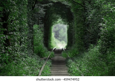 Tunnel of Love, Ukraine, Klevan city The green corridor formed by the branches of trees and shrubs Ukraine trip picturesque natural monument tracks surrounded by forest