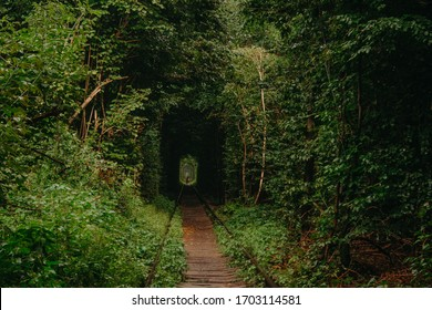 Tunnel of Love. Tunnel of Love in Ukraine. A railway in the autumn forest tunnel of love. Old mysterious forest.