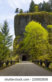 Tunnel on Historic Columbia River Highway