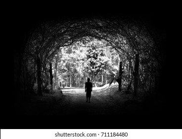 tunnel tree and hope Tree tunnel And the light at the exit From dark to light