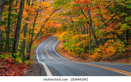 Tunnel of trees in autumn time along scenic byway M41 in Keweenaw peninsula in Michigan upper peninsula