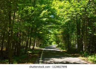 Tunnel Of Trees drive in Upper Michigan Peninsula