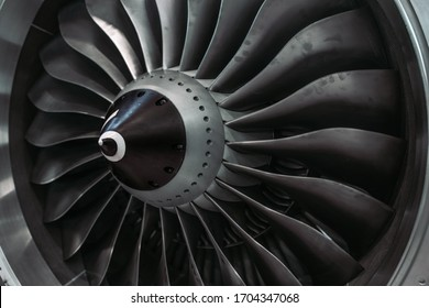The turbine of the aircraft is clearly visible the impeller and all the front elements