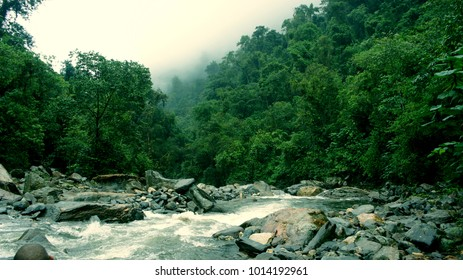 Turbulent river in the Colombian rainforest