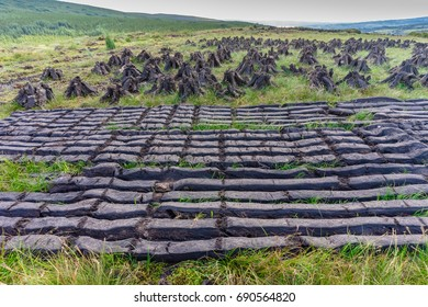 Turf fossil fuel, drying in the sun, on the side of a mountain, in Ireland.