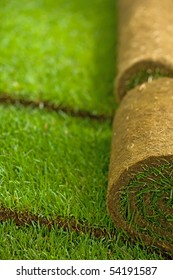 Turf grass rolls in a row partially unrolled - shallow depth of field