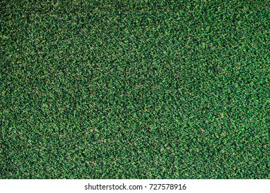 Turf ground grass for background