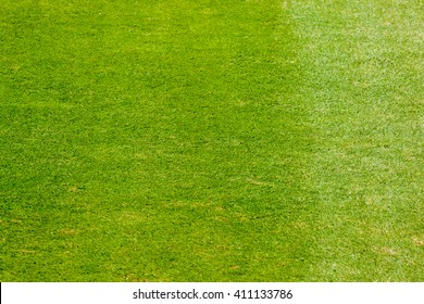 Turf soccer