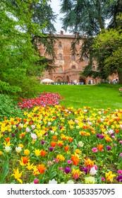 Turin, Piedmont ,Italy, 25 April 2013. Castle of Pralormo, beautiful garden tulips in Turin, Piedmont, Italy