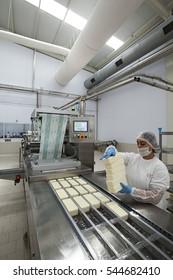 Turkey - June 16 ,2015 :A cheese factory in Bursa Mustafakemalpasa.