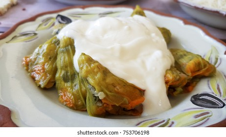 Turkish and Arabic Traditional Food Kabak Cicegi Dolmasi serving with greek yogurt on top. Squash blossoms are edible flowers of Cucurbita, particularly pepo, species that produces zucchini, marrow.