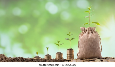 Turkish coins in linen sack. Young plants growing on coins. Investment and Finance Concept