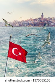 Turkish flag and flying seagulls on sea background with Galata tower on skyline. Seaside of Istanbul, the gulf of Golden Horn as landscape for vertical poster or cover about your travel on Turkey.