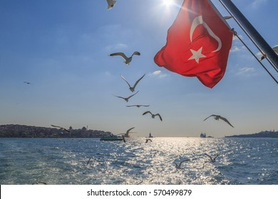 Turkish flag with flying seagulls on kadikoy background with madien tower.