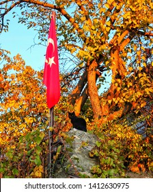 Turkish flag next to a cat. Safranbolu/Karabük/Turkey 07.12.2017