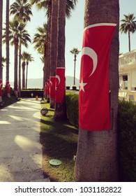 Turkish flags on palm trees. Turkish night