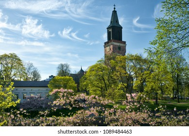Turku Cathedral at spring with cherry blossoms and green trees in Turku, Finland