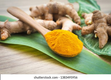 Turmeric powder and fresh turmeric in wooden spoon with green leaf on old wooden table. Herbal