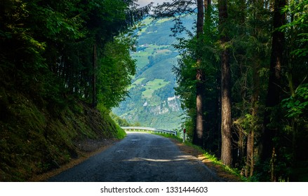 Turn of the asphalt road leading through thick Italian forest with high pine and fir trees to high Dolomite mountains at sunny day, amazing outdoor landscape