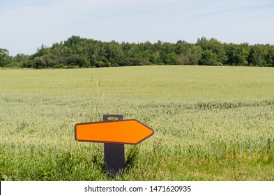 Turn right road sign by a green farmers field in summer season