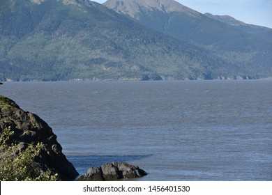 Turnagain Arm, Alaska. U.S.A. June 21, 2019. Turnagain Arm can be angry and can have large tides of up to 40 feet (12 meters) which are the largest tides in the United States.  Bore tides can be 40-ft
