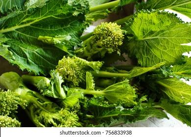 Turnip greens, Cime Di Rape from Italy