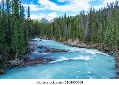 Turquoise glacier river in Yoho National Park, British Columbia, Canada