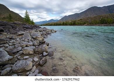 Turquoise river Katun. Mountain Altai