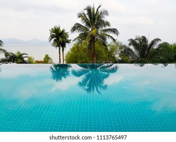 The turquoise swimming pool, that is decorated with small blue tile. And on the water surface, there is shade of trees, that are in front of the swimming pool and on the seashore.