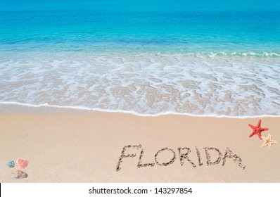"turquoise water and golden sand with shells and sea stars and ""florida"" written on it"