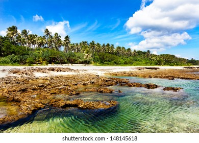 Turquoise water on lava beach with palm trees in the background
