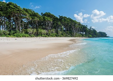 turquoise water of sea at laxmanpur beach, Neil Island, Andaman and Nicobar, India