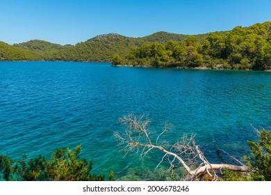 Turquoise water of Veliko Jezero at Mljet national park in Croatia - Shutterstock ID 2006678246
