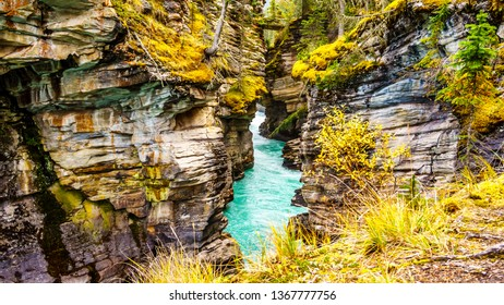 The turquoise waters of the Athabasca River flows through a canyon right after the Athabasca Falls in Jasper National Park in the province of Alberta, Canada