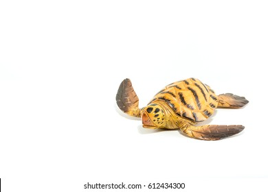 Turtle carved on wood isolated in white background