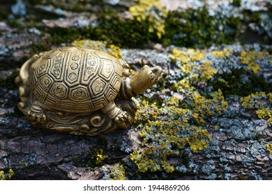 A turtle figurine on a tree trunk. The symbol of Feng Shui.