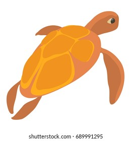 Turtle icon. Cartoon illustration of turtle  icon for web isolated on white background