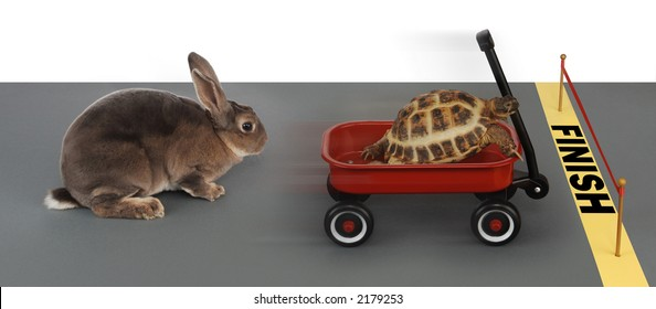 turtle winning the race against a rabbit in a red wagon