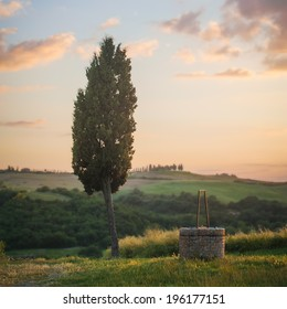 Tuscan landscape of cypress and a well