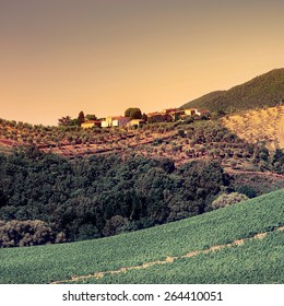 Tuscan Landscape with Vineyards and Olive Groves at Sunset, Retro Image Filtered Style