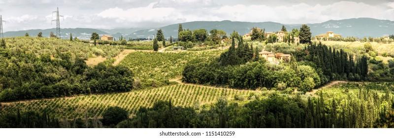 Tuscan wine-growing landscape at Montespertoli, Florence
