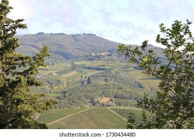 Tuscany Chianti Vinyard & Landscape Views