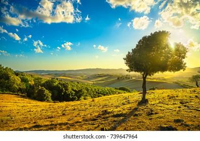 nature landscape images stock photos vectors shutterstock