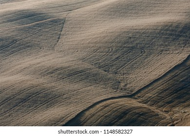 Tuscany countryside: Shadows and lights at sunset on sinuous Tuscan hills wheat fields.