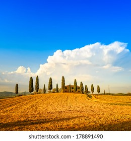 Tuscany, farmland and cypress trees and white road, country landscape. Siena, Val d Orcia, Italy, Europe.