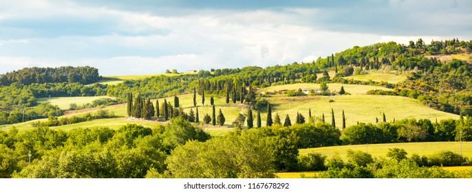 Tuscany hills. Italy