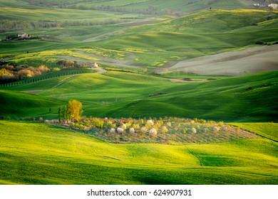 TUSCANY, ITALY - APRIL 10, 2016: Country in Orcia valley near Pienza, Tuscany, Italy